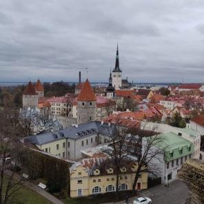 View from Tallinn